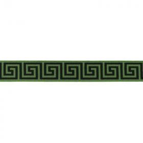 Goma Elástica patron griego verde